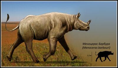 Menoceras