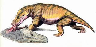 Scylacosuchus