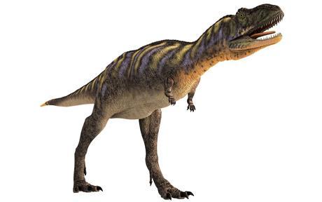 File:Dinosaur 1622654c.jpg