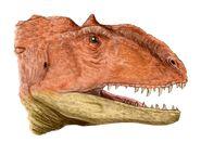 Majungasaurus head BW