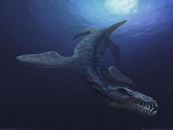 Liopleurodon BW