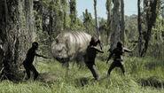 The diprotodon monsters we met 600