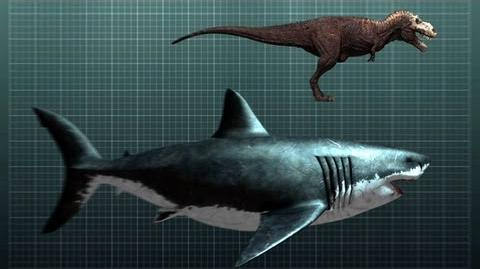 The Nightmarish Megalodon Sharkzilla -- Shark Week 2012