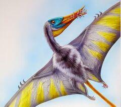 Rhamphorhynchus.jpg