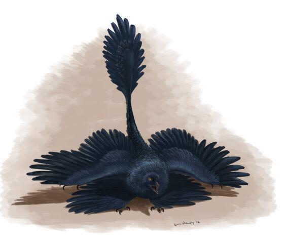 File:Microraptor-threat-display.jpg