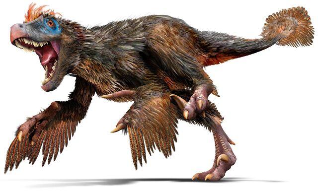 File:Velociraptor u4hjbq.jpg