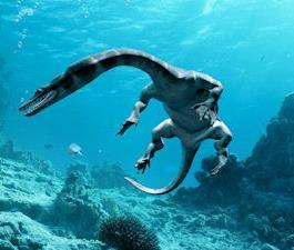 File:Nothosaurus5.jpeg