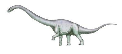 Tehuelchesaurus EV