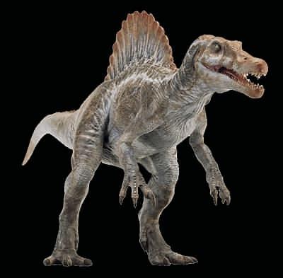 File:Spinosaurus02.jpg