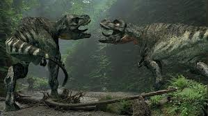 Pair of Rex's