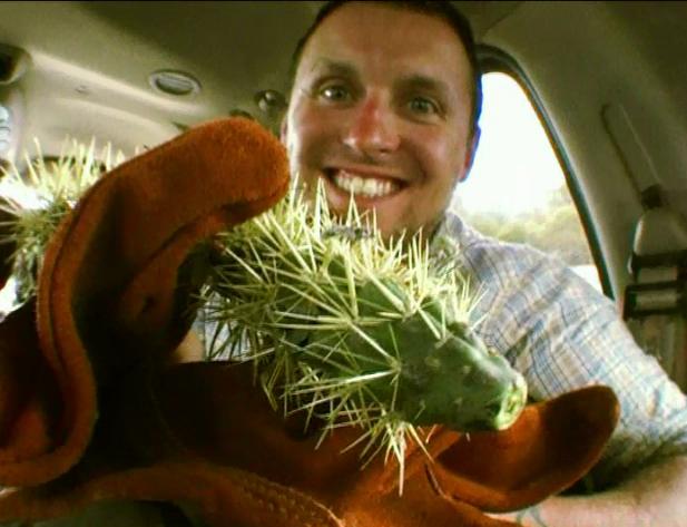 File:Cactusincident.png