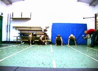 Painolympics2
