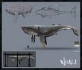 2 concept art whales2.png