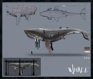 2 concept art whales2