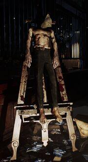 Ichabod Boyle body