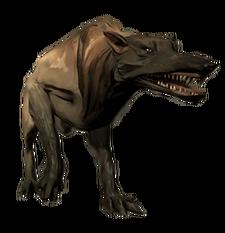 Wolfhound render