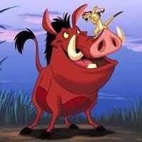Timone and puma 1