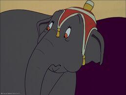 Elephant Giddy