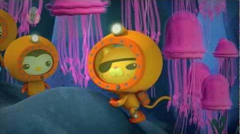 "The Octonauts and ""The Jellyfish Bloom"""