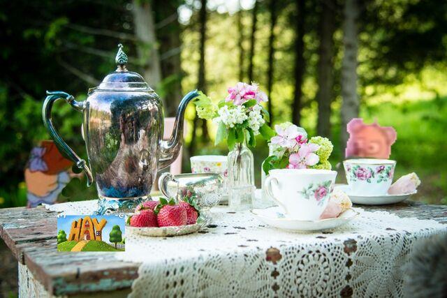 File:Tea Party Doll Teddy Bear.jpg