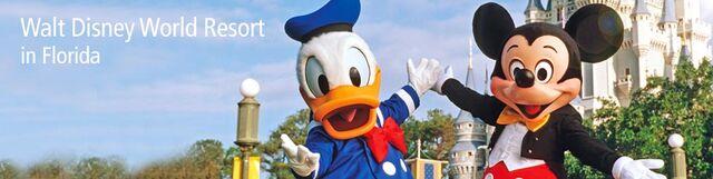 File:Disneyworld-orlando-980x246.jpg