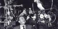Enchanted Tiki Room Birds