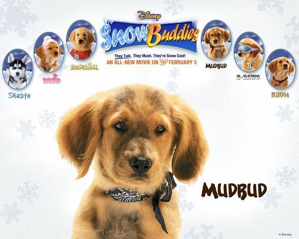 File:Snow buddies mudbud.jpg