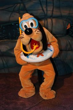 File:Pluto about to swim.jpg