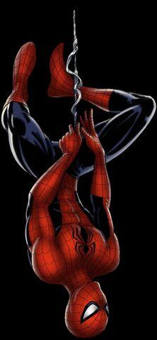 File:Spider-man Avengers Alliance.jpg