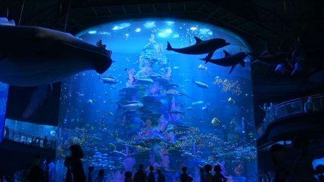 File:Finding Dory 41.png
