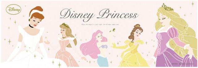 File:NEWS disney princess-644x222.jpg
