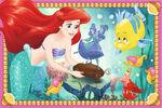 Ariel's treasures