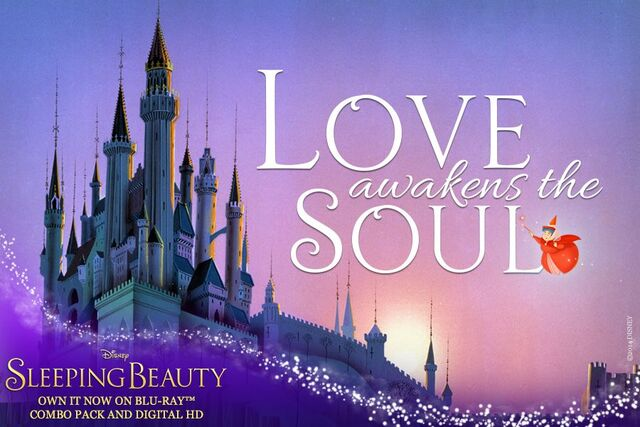 File:Sleeping Beauty Diamond Edition Love Awakens the Soul Promotion.jpg