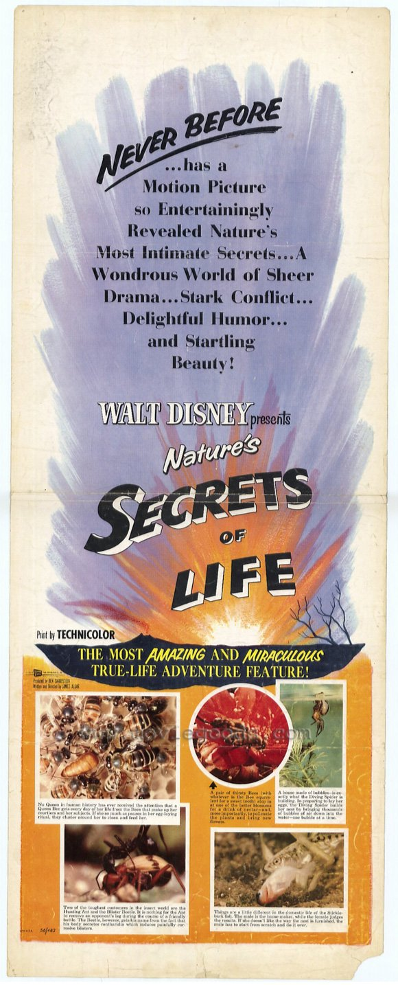 File:Secrets of life movie poster.jpg