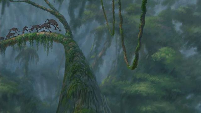 File:Tarzan-disneyscreencaps com-4268.jpg