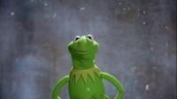 GagaMuppets-KermitMessage