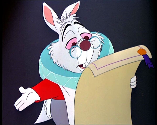 File:White-rabbit-3.jpg