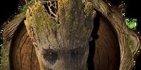 Groot/Gallery