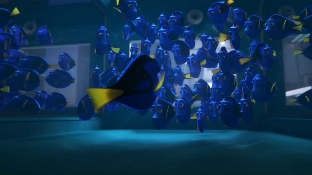 File:Finding Dory 50.png
