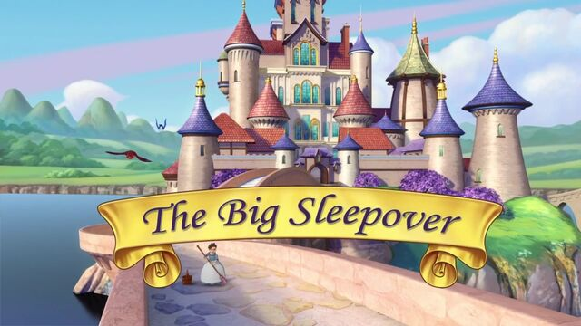 File:The Big Sleepover titlecard.jpg