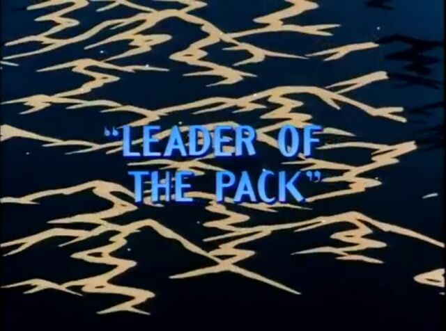 File:Leader pack.jpg