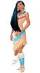 Pocahontas 2015 Redesign