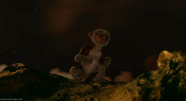 File:Suri on the log mournfully calling.jpg