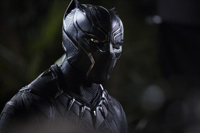File:Black Panther photography 1.jpg