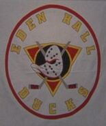 Eden Hall Ducks