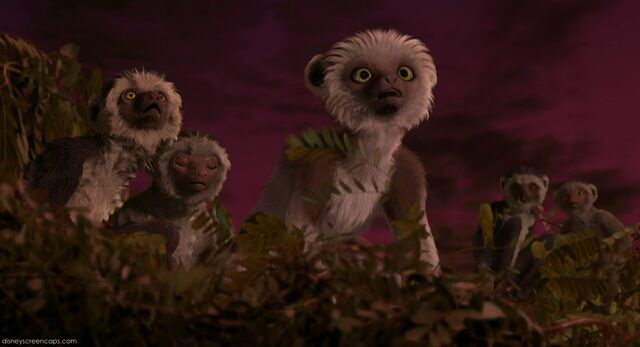 File:Suri on the top of the tree with the other lemurs.jpg