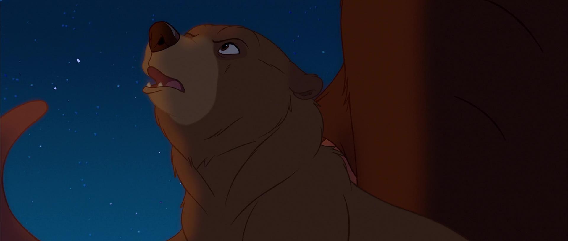 File:Bear 58.jpg