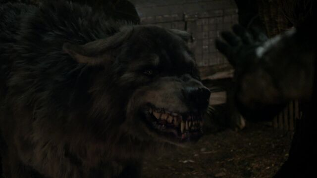 File:Wolf The Bear King.jpg