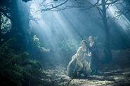 Woods-cinderella-wife