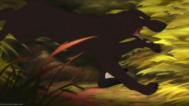 File:Bambi2-disneyscreencaps.com-6397.jpg